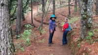 Two women stand on a trail in the forest