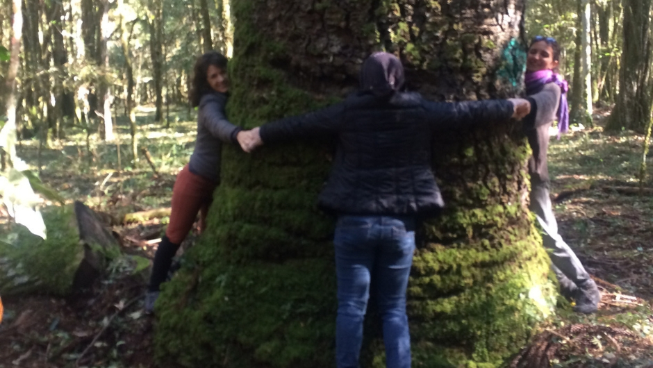 Three women wrapping their arms around a large tree trunk grasping hands