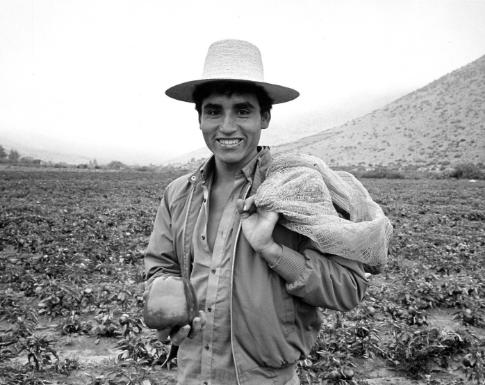 A farmer in Chile proudly holds a pepper he grew