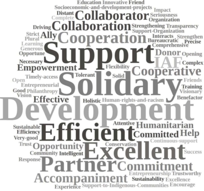 A word cloud of words IAF grantee partners used to describe the IAF, featuring prominently words like support, solidary, development, efficient, excellent and partner.
