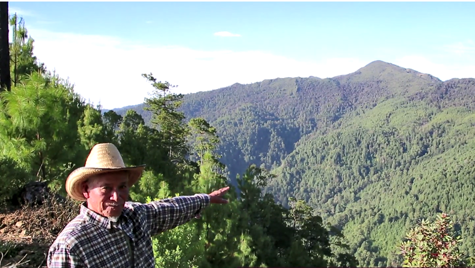 Forester Lino Hernandez stretches his arm over a valley to demonstrate all of the forests his community manages.