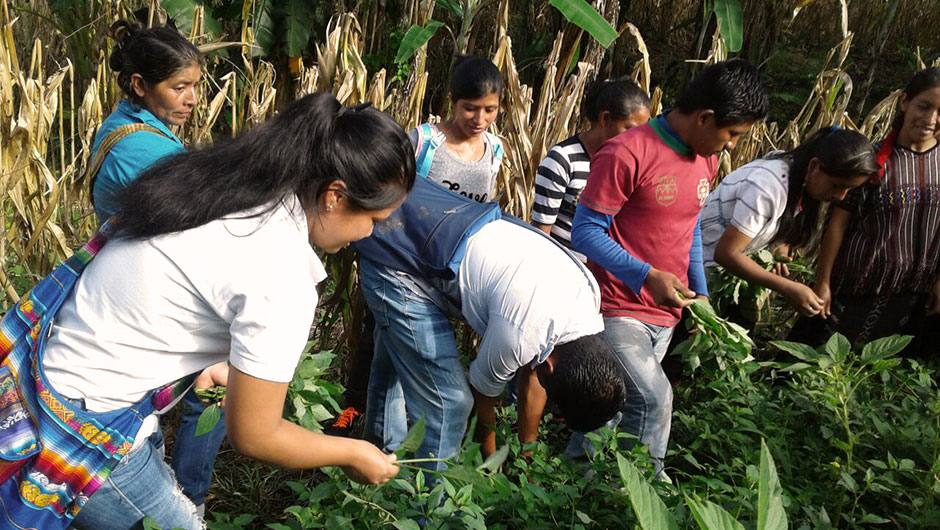Guatemalan youth participate in an Utz Che activity