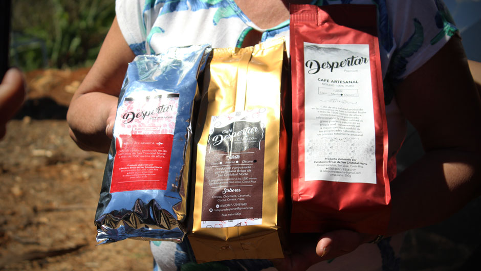 A coffee grower proudly displays three coffee bags in brightly colored packaging that are ready to be sold.