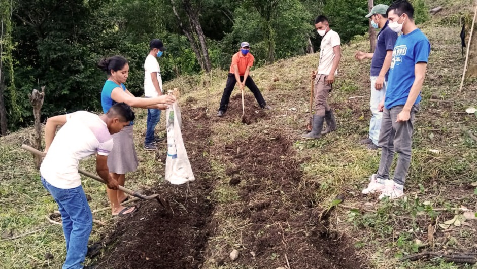 A group of young people dig on a hill to create terraces.