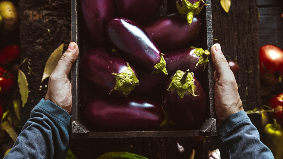 A farmers' hands cradle a box of pristine eggplants.