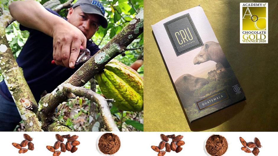 Un collage de fotos muestra a un trabajador cosechando cacao y una barra de chocolate lista para vender.