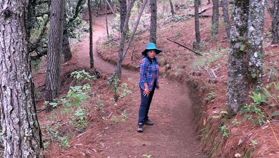 Azucena Díaz hikes on a trail in a Mexican forest.