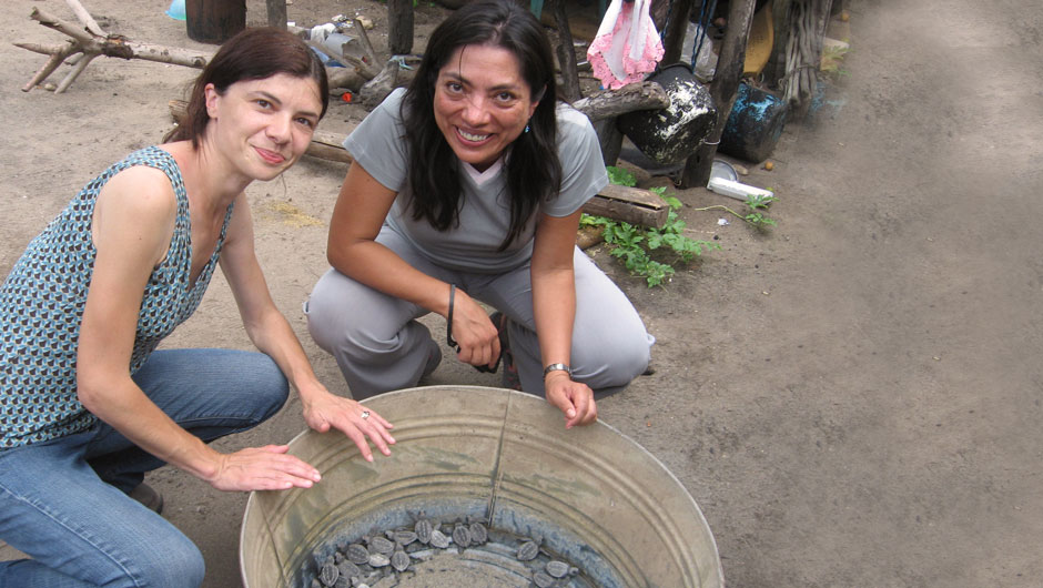 Azucena Diaz crouches along a big bucket of baby turtles alongside another IAF staff member.